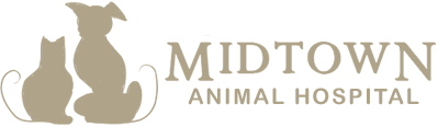 Midtown Animal Hospital